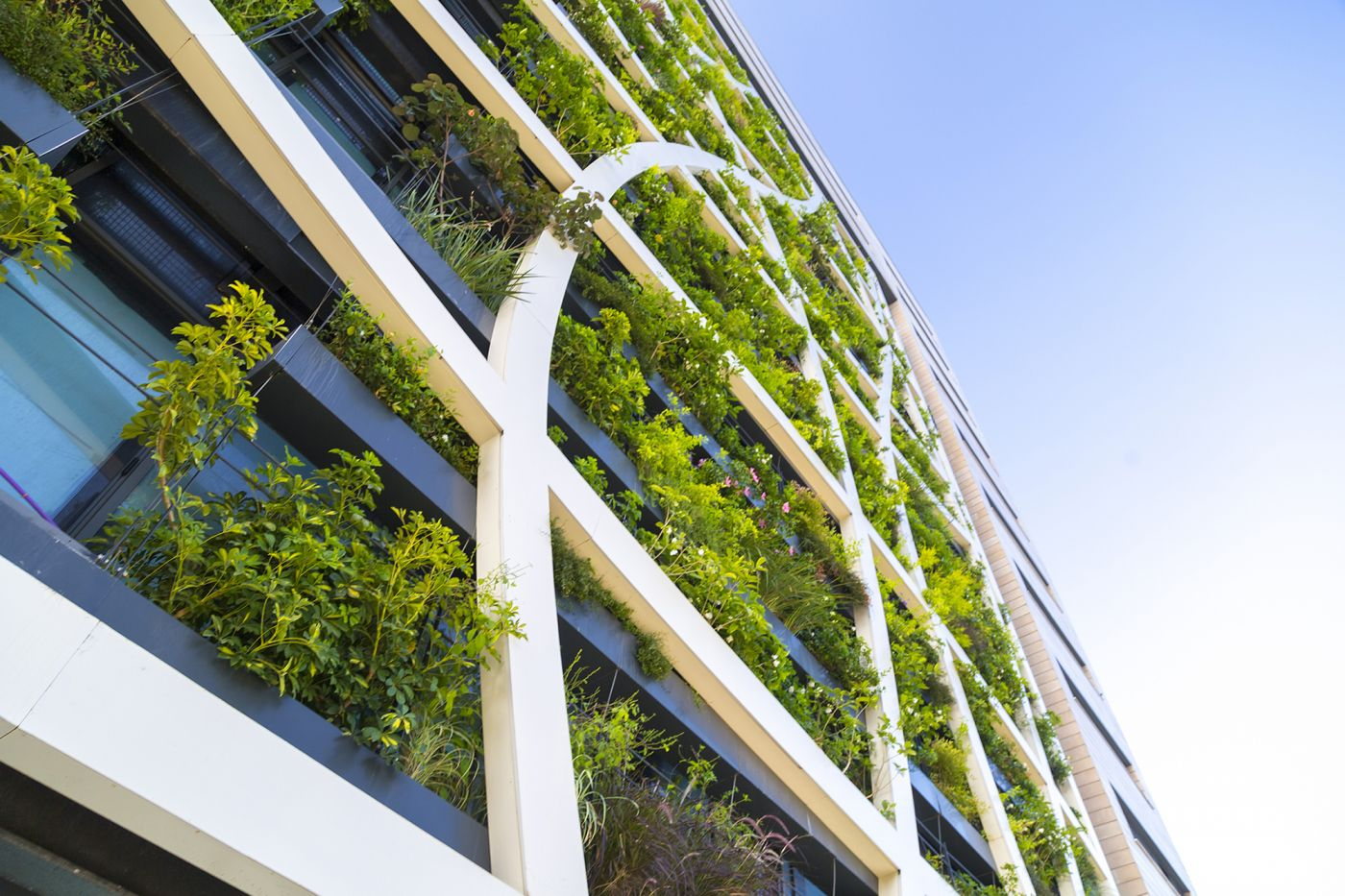 Sustainable hotel building with green leaf facade