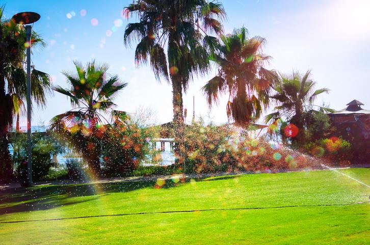 Sprinklers at hotel
